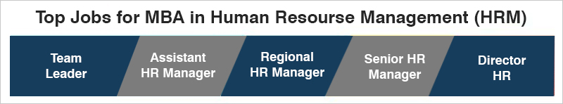 MBA In Human Recourse