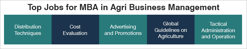 MBA in Agri Business